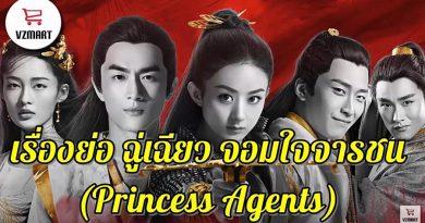 เรื่องย่อ ฉู่เฉียว จอมใจจารชน Princess Agents