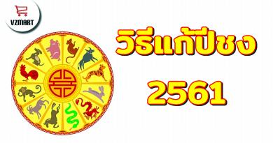 วิธีแก้ปีชง2561